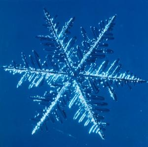 Snowflake: formation (DI00310)